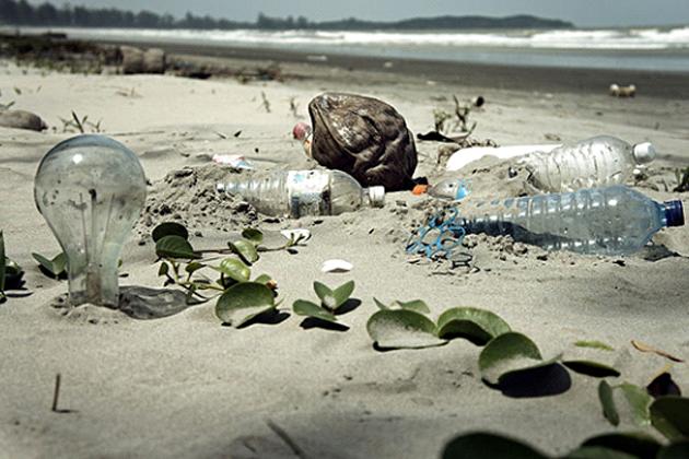 塑膠汙染有解?科學家意外製造出「食膠酶」 可分解塑膠