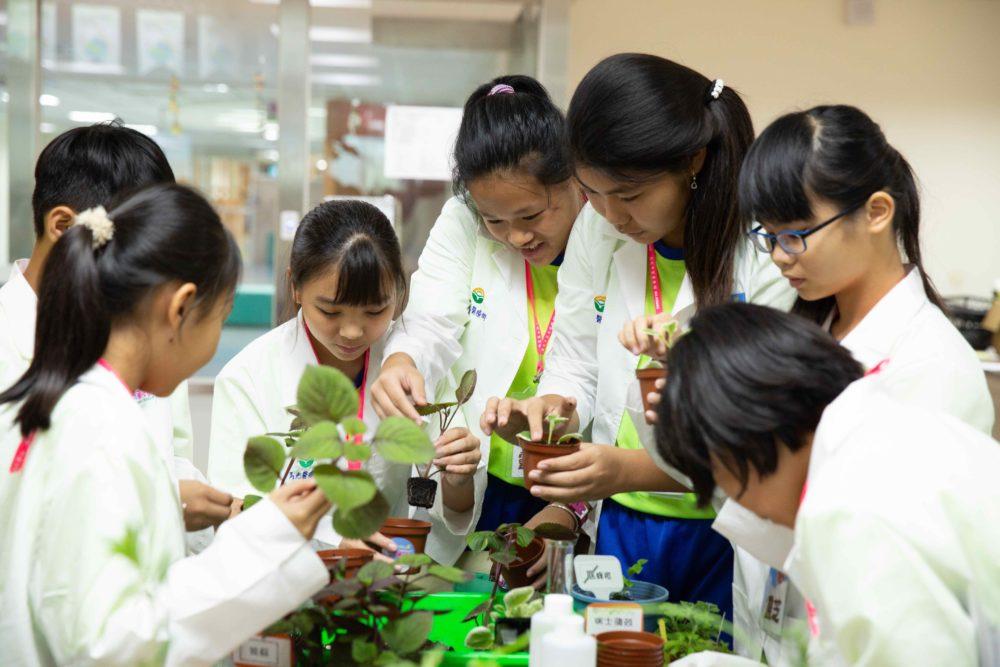 翻轉綠色教育!當環保遇上中醫藥  百位小華陀笑種香草藥