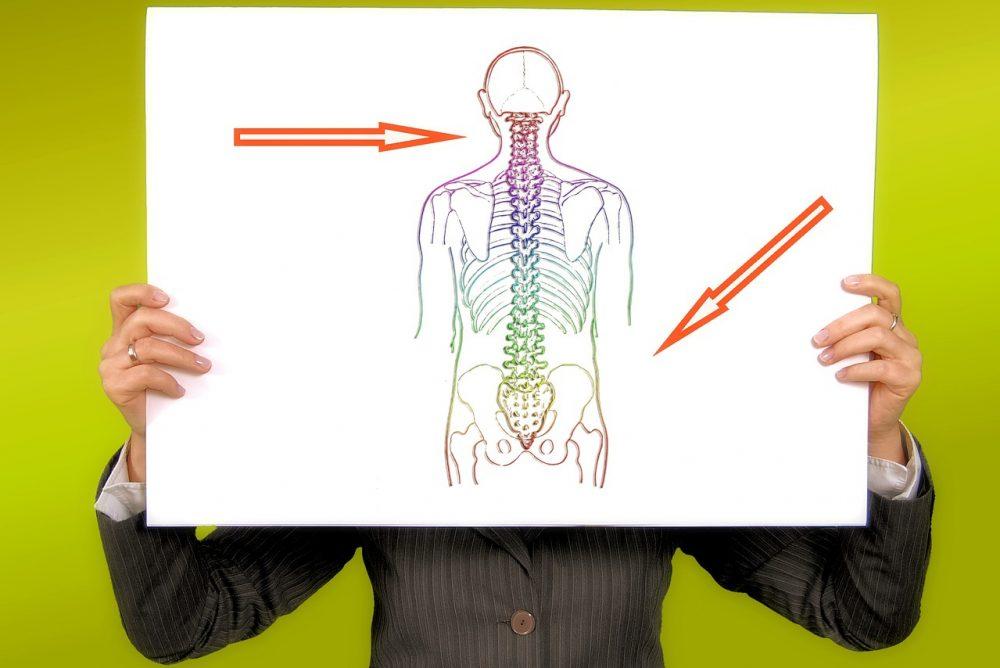 自己的脊椎自己矯正 在家DIY改善脊椎側彎