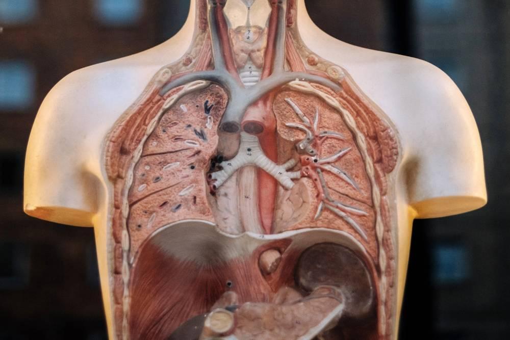 最有價值的一個決定!振興醫院8/19器官捐贈推廣活動