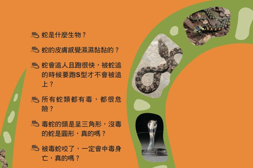 夏季炎熱避免遭蛇吻 北市動保局教導如何人蛇相安無事