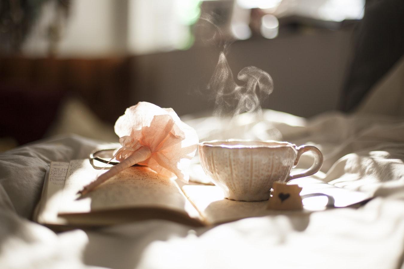 【蔡順山專欄】台灣東方美人茶的最佳沖泡方法