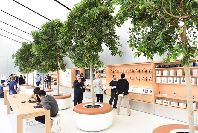 Trees line a second floor retail area for audio accessories at the media preview for a new Apple retail store in San Francisco, California, U.S., May 19, 2016. REUTERS/Noah Berger - RTSF2O2