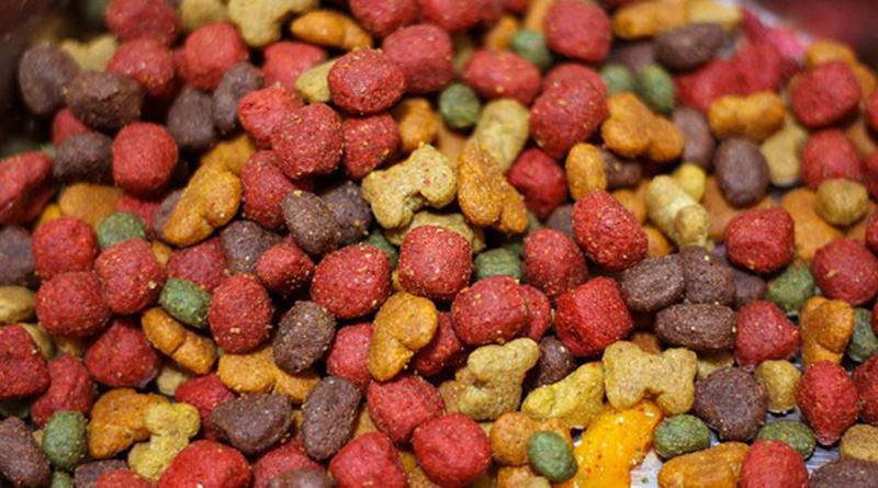 北市抽查寵物食品 6成標示不合格