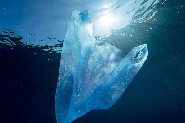 印度研發有機塑膠袋,你還記得「生物分解塑膠」嗎?