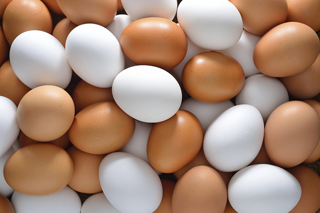 冷藏?清洗? 雞蛋貯存大哉問