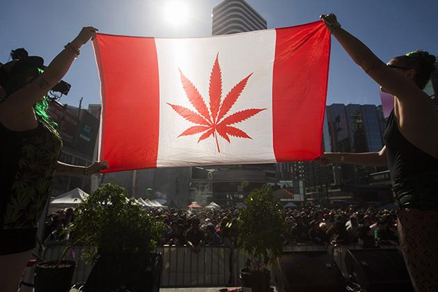 加拿大政府計畫在明年7月前實現娛樂性大麻合法化