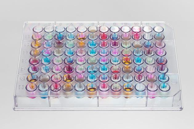 「Google嗅覺」成真?Aromyx建立氣味資料庫