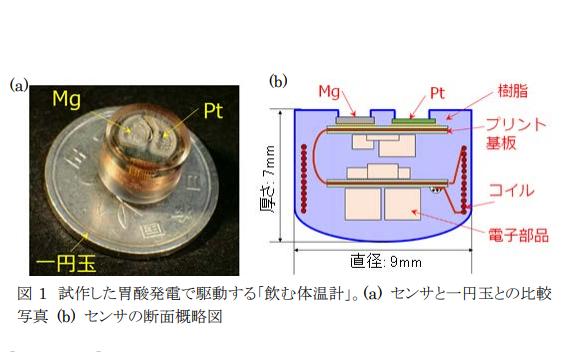 日本科學家成功開發「可吞式溫度計」 主要功能曝光了!