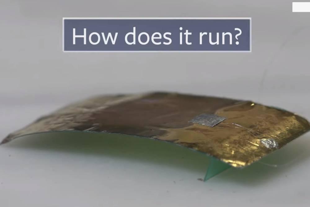 史上最強「蟑螂機器人」誕生!速度快、能載重 還能用在地震搜索
