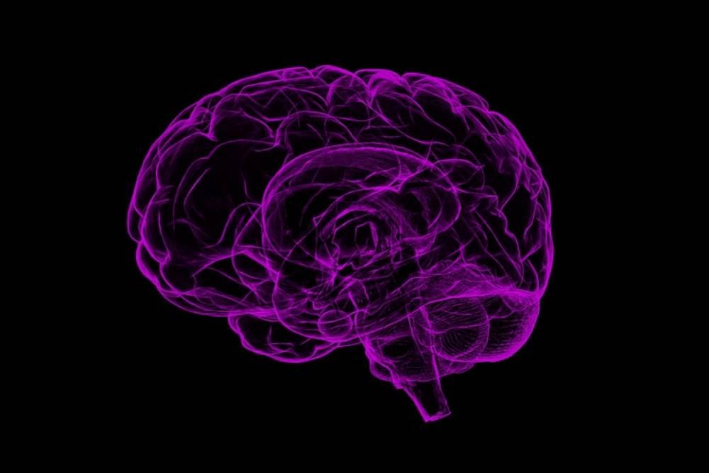 【名家論壇】帕金森氏症與粒線體失能的關係 – 從被活化的大腦神經微膠細胞中的發炎小體談起