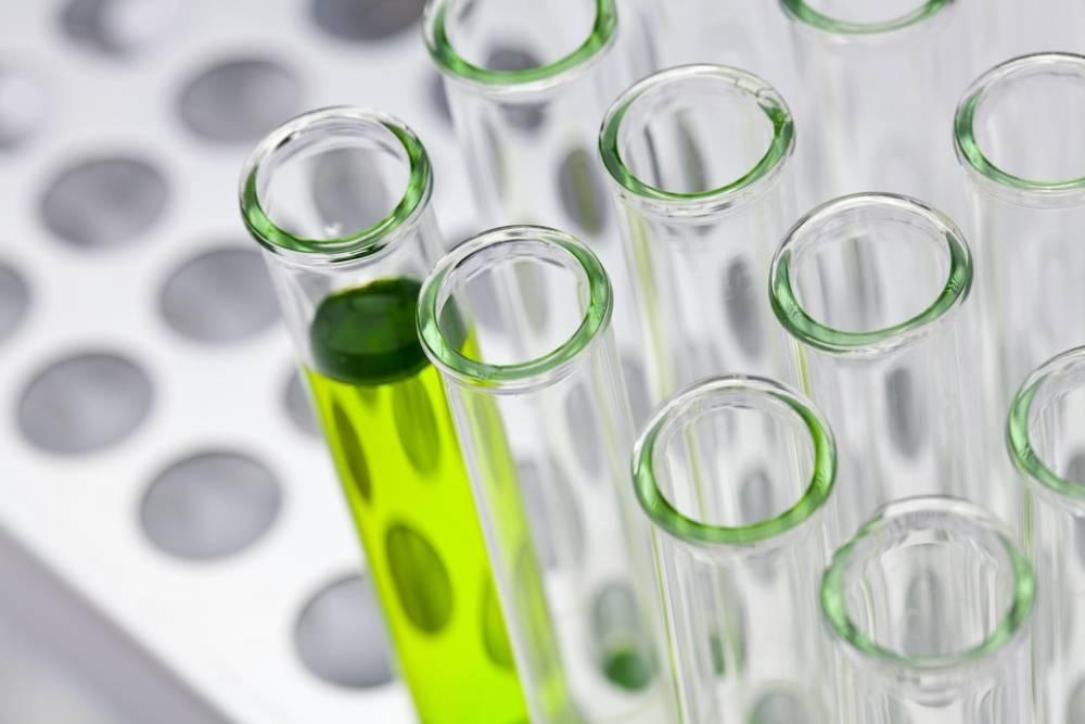 研究證實 傳統中藥茯苓萃取物可助提升免疫、抗氣喘