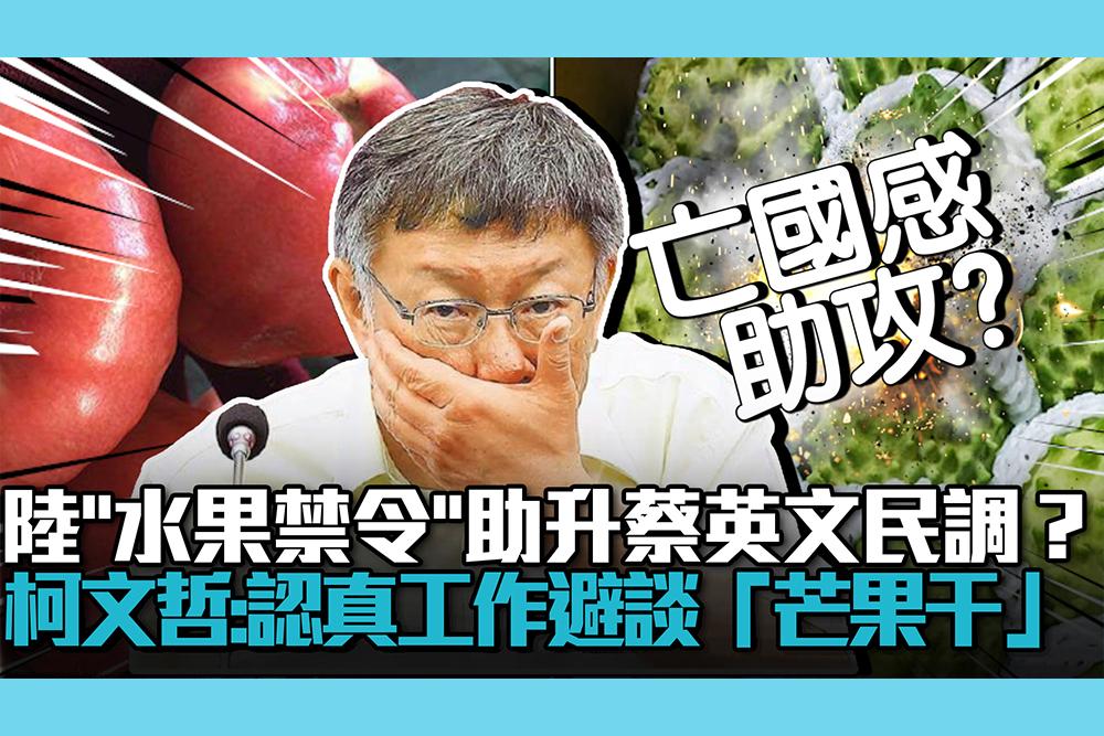 【CNEWS】陸「水果禁令」助升蔡英文民調?柯文哲:認真工作避談「芒果干」