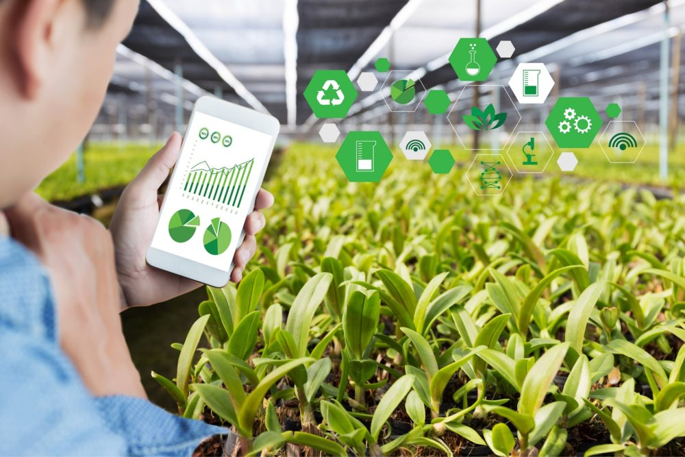 台灣之星物聯網正式跨足智慧農業