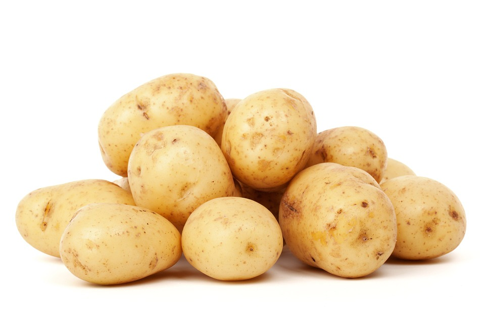 馬鈴薯變綠「越綠越有毒」? 食藥署教你一次搞懂問題在哪