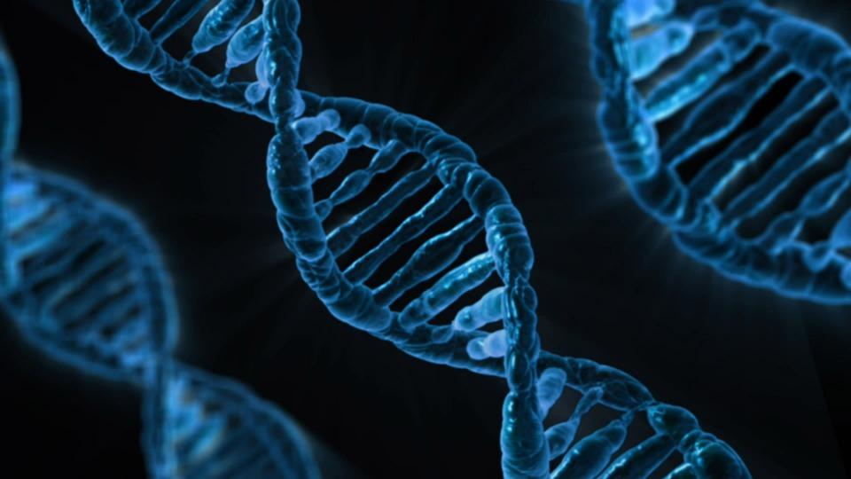 個人化基因全檢測 台灣費用突破下降至3萬內