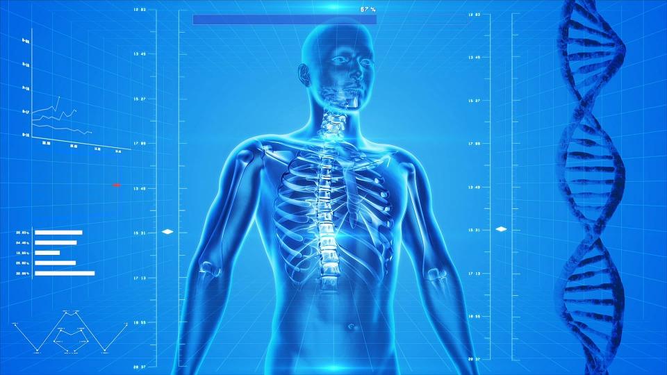 【有影】血尿、腹腫、腰痠三大凶兆…  無聲「腎癌」上身治療有進展了