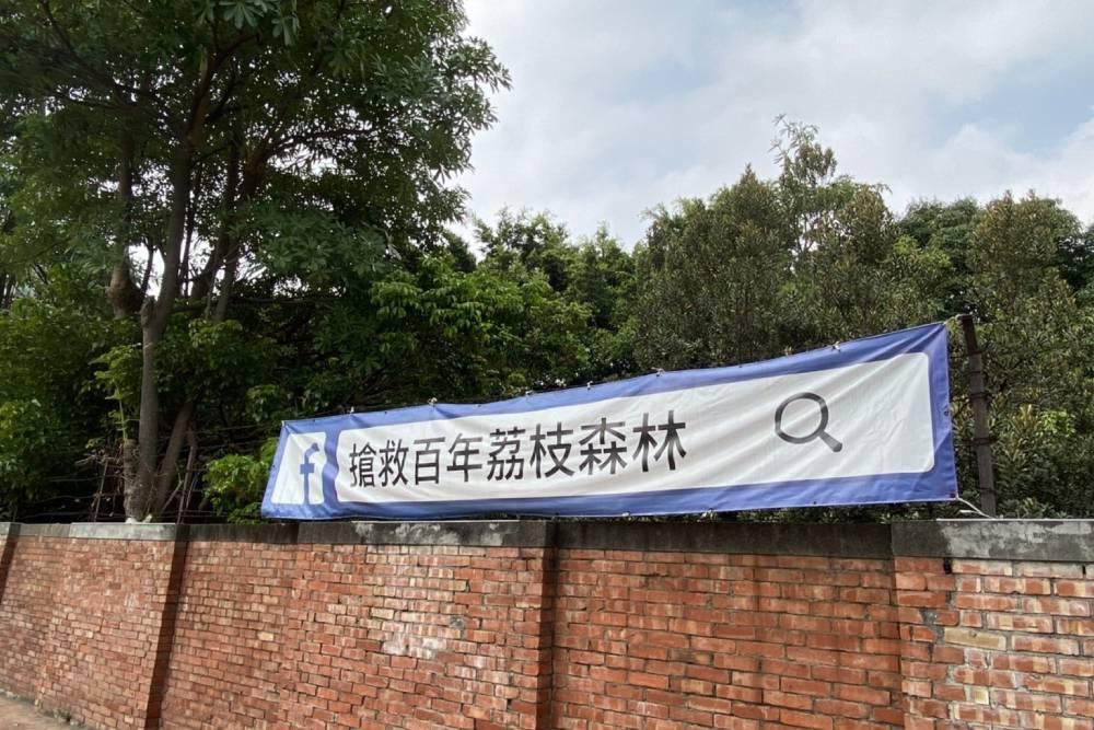 台中市區百年荔枝森林搶救保留成功