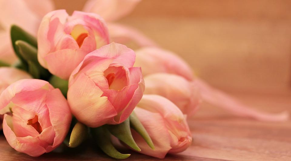還怨送花不實在、不如折現? 研究發現:送花有效紓緩女性壓力